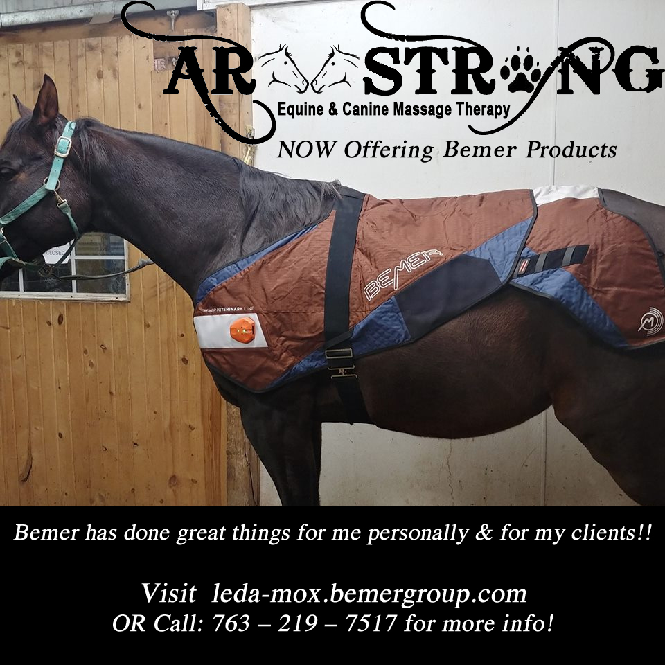Bemer Equine Products